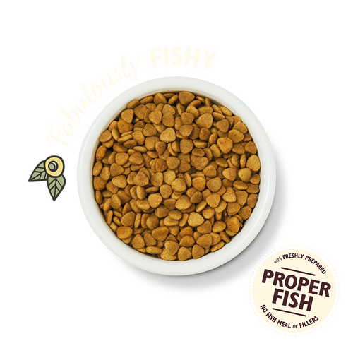 White Fish & Salmon Dry Food (2kg)