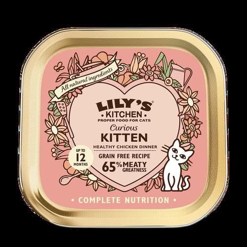 Curious Kitten Dinner