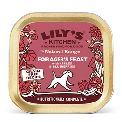Forager's Feast with Apples & Blueberries (150g)