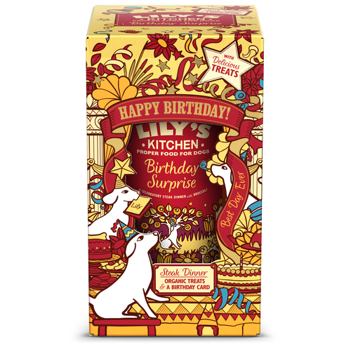Birthday Surprise For Dogs (400g)