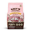 Chicken & Salmon Dry Food for Puppies (1kg)