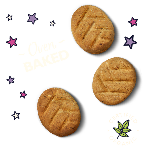 Organic Bedtime Biscuits