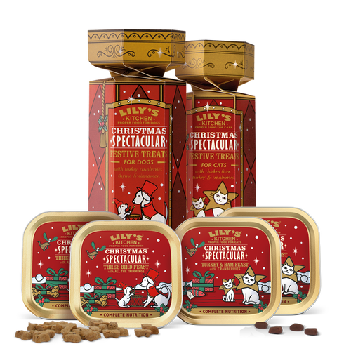 Best of Friends Christmas Gift Set for Cats and Dogs
