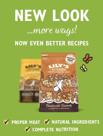 New Dog Dry Food