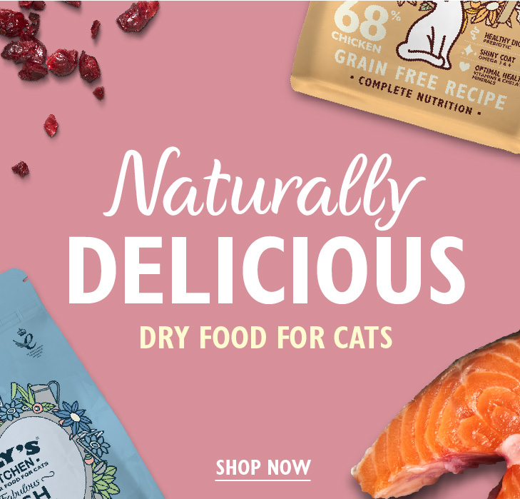 Dry Food for Cats