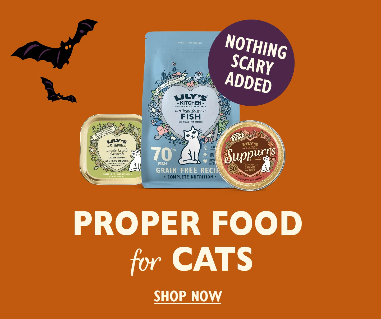Proper Food for Cats