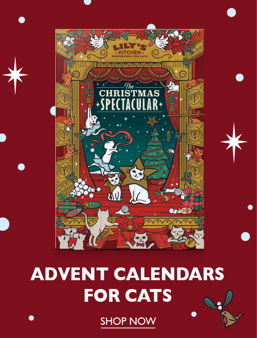 Advent Calendar for Cats