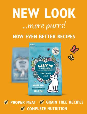 New Cat Dry Food