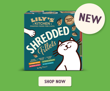 Shredded Fillets