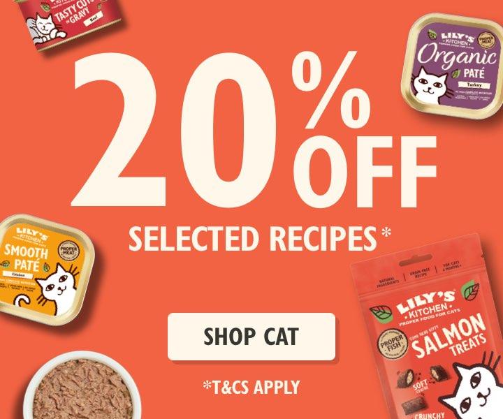 Cat Food Sale