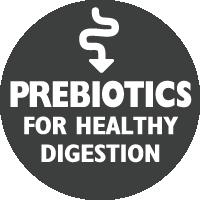 images\key-benefits\prebioticsforhealthydigestion.png